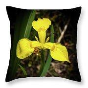 Iris Of The Marshes - 1 Throw Pillow