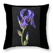 Iris On Black Leather Throw Pillow