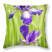 Iris Pair Throw Pillow