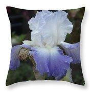 Iris Singing The Blue Throw Pillow
