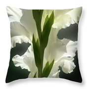 Gladiolus Spectacular #2 Throw Pillow