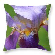 Iris Spirit Throw Pillow