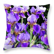 Iris Splendor Throw Pillow