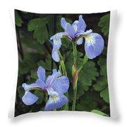 Iris Study Throw Pillow