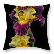 Iris Triple Throw Pillow