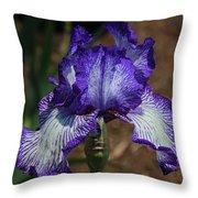 Iris Unraveled Throw Pillow