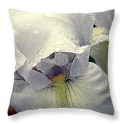Iris With A Bonnet Series 7 Throw Pillow