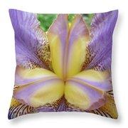 Irises Art Purple Yellow Iris Flowers Giclee Prints Baslee Troutman  Throw Pillow