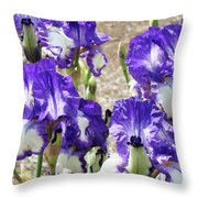 Irises Floral Art Iris Flowers Purple White Baslee Troutman Throw Pillow