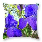 Irises Floral Garden Art Print Blue Purple Iris Flowers Baslee Troutman Throw Pillow