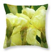 Irises Flower Garden Yellow Iris Baslee Troutman Throw Pillow