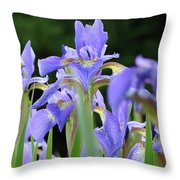 Irises Flowers Art Prints Blue Purple Iris Floral Baslee Troutman Throw Pillow