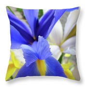 Irises Flowers Artwork Blue Purple Iris Flowers 1 Botanical Floral Garden Baslee Troutman Throw Pillow