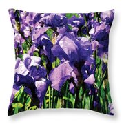 Irises Princess Royal Smith Throw Pillow