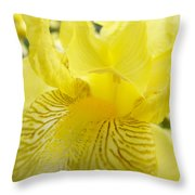 Irises Yellow Brown Iris Flowers Irises Art Prints Baslee Troutman Throw Pillow