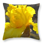 Irises Yellow Iris Flowers Art Prints Floral Canvas Baslee Troutman Throw Pillow