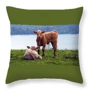 Irish Calves At Lough Eske Throw Pillow