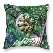 Irish Fiddler Throw Pillow
