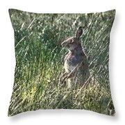 irish Hare Throw Pillow