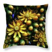 Irish Rose. Also Known As Pinwheel Throw Pillow