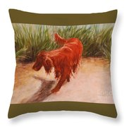 Irish Setter In The Grass Throw Pillow