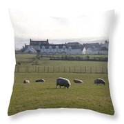Irish Sheep Farm Throw Pillow
