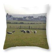 Irish Sheep Farm I Throw Pillow