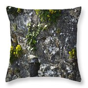 Irish Stone Flowers Throw Pillow
