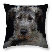 Irish Wolfhound Droc Vi Throw Pillow