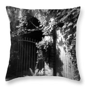 Iron Gate And Wooden Door Throw Pillow