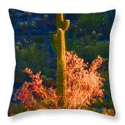 Ironwood Saguaro Dance - Bold Throw Pillow