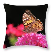Irredescent Throw Pillow