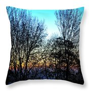 Irreplaceable Beauty Throw Pillow