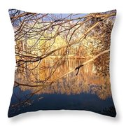 Irresistable Beauty Throw Pillow