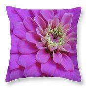 Irridescent Pink Throw Pillow