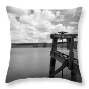 Irrigation Pond Throw Pillow