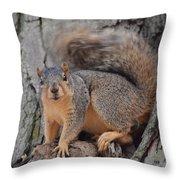 Irritated Squirrel Throw Pillow