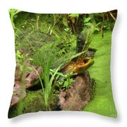 Is Green In Throw Pillow