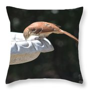 Is It Almost Empty Throw Pillow