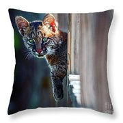 Is It Me You're Looking For  Throw Pillow