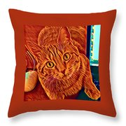 Is There A Mouse In The House? Throw Pillow
