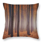 Is There Anybody In There? Throw Pillow