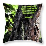 Isaiah 61 Verse 1 Throw Pillow