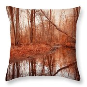 Island Creek Story Throw Pillow
