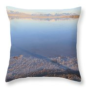 Island In The Desert 3 Throw Pillow