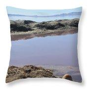 Island In The Desert Throw Pillow