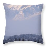 Island In The Sky Throw Pillow