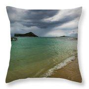 Island Living Throw Pillow