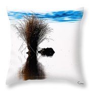 Island Of Reflection Throw Pillow