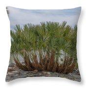 Island Palms Throw Pillow